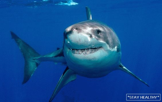 cápaolaj pikkelysömör kezelése