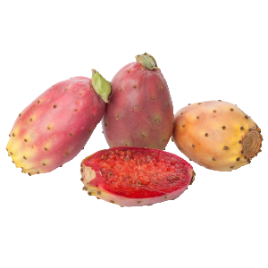 kaktusz pikkelysömör orvosság a pikkelysmr monoklonlis ellenanyagokkal kezelik